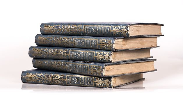 Miniwoordenboek Japans-Nederlands - Kiëta Koi Veendam