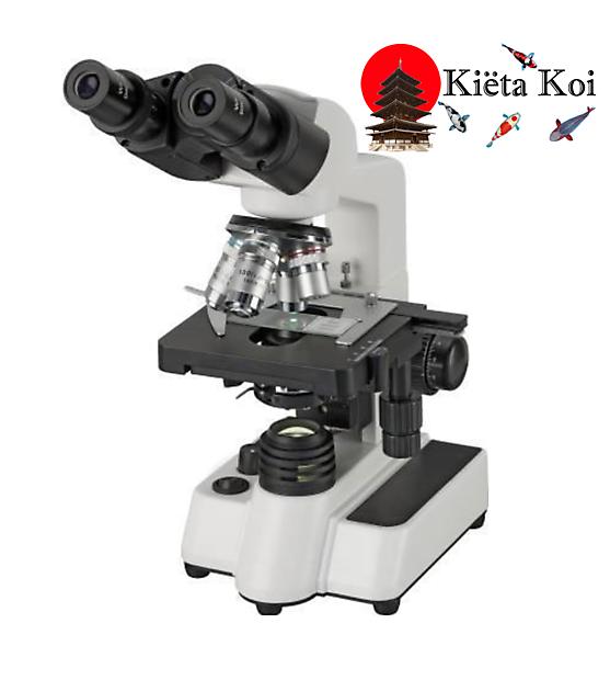 Microscoop Bino Researcher 40 x-1000x - Kiëta Koi Veendam