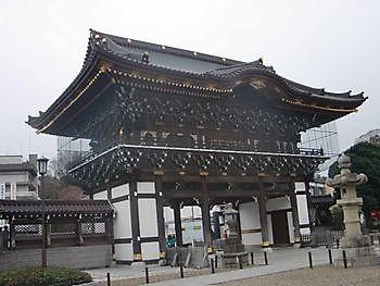 De geschiedenis van de Nishikigoi Kiëta Koi Veendam
