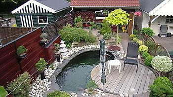 Japanse tuin Kiëta Koi Veendam