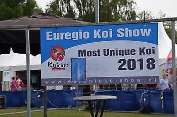 Euregio Koi Show 2018 Kiëta Koi Veendam
